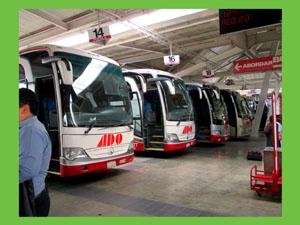 並ぶバス-3