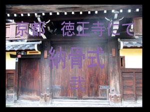 徳正寺-1