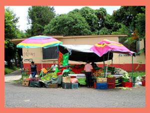 果物店-7